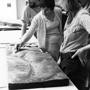 Inspecting a landscape model