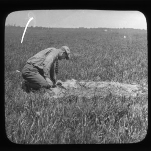 Man with tie looking into soil pit