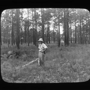 Botanist in front, entomologist in back, among old longleaf pine