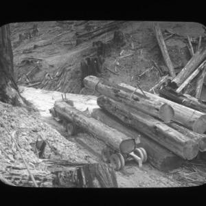 Redwood logs on logging cart