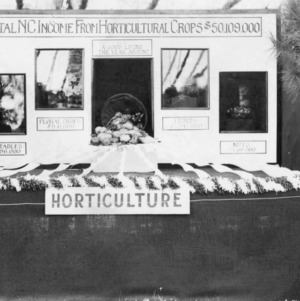 Winning exhibit at the North Carolina student agricultural fair, North Carolina State College