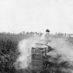 Spraying blueberries, April 1940