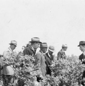 Fruit breeders on tour. Stop on farm of H. G. Huntington in Pender County, April 1940