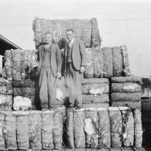 T. F. Sellers of King's Mountain, NC, winner of the $200 first prize by producing 5084 pounds of lint cotton on five acres of land