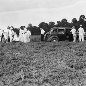 Bertie farm tour visiting peanut demonstration, August 25, 1937