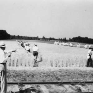Small grain field day at the Statesville test farm, May 1941