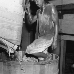 Man crushing tobacco leaves in a barrel
