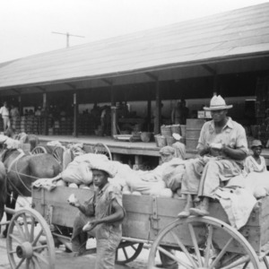 Delivering cantaloupes to packing sheds, Johns, North Carolina, July 1937