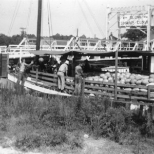 Watermelons being loaded on a boat from trucks driven along close to the canal bank at Coinjock