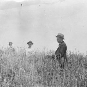 Three men standing in a field
