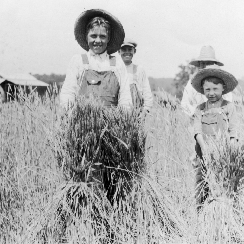 """Small Morton boy to the right is exhibiting a square rod of wheat that grew without the use of soil improvement methods and lespedeza"""