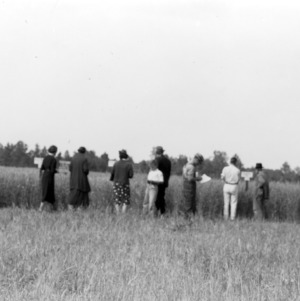 Inspecting wheat variety demonstration of the farm of C. L. Neel, Salisbury, North Carolina, May 17, 1939