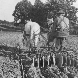 Tilling a field near North Carolina College of Agriculture and Mechanic Arts