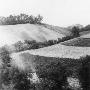 To show part of two types of farming in the same picture, June 1938