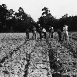 Group of farmers in a bare field