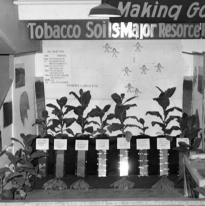 """Making good tobacco better"" display showing tobacco soil's major resource"