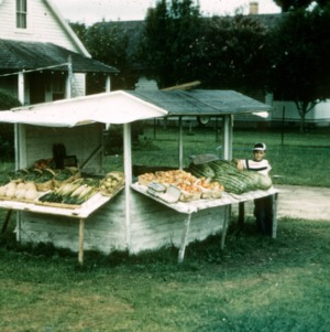 4-H fruit and vegetable stand