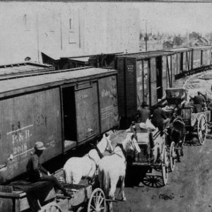 Boxcars and wagons
