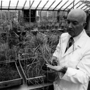 Dr. Joseph Sasser researching root knot nematodes