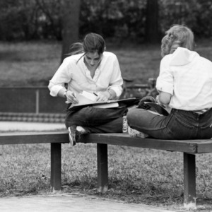 Students doing homework on a bench