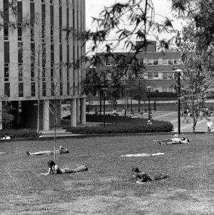 Students lying on the grass outside Harrelson Hall