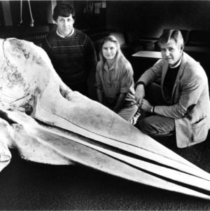 Steven Holladay, Miriam Spann, Dr. J. Edgar Smallwood studying a whale skull