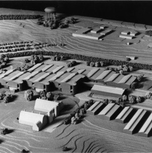 Architect's Model of Veterinary Medical Complex
