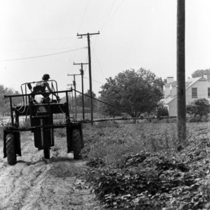 Man on tractor conducting pesticide ground treatment for boll weevil control