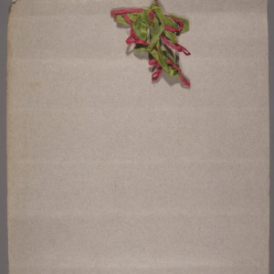 1912 girl's club, tomato club booklet by Biddie Wagner