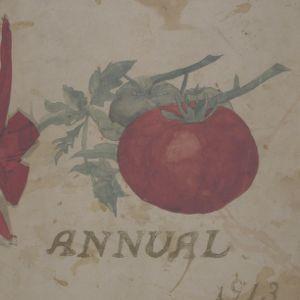 Annual, 1913