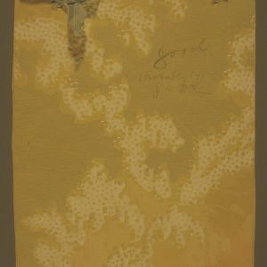 1913 girls club, tomato club booklet by Sadie Linner