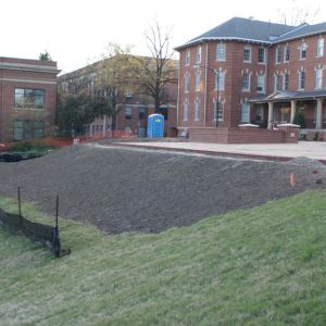 1911 Building landscape renovations