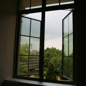 Looking through a new window in Withers Hall