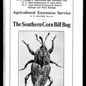 The Southern Corn Bill Bug (Extension Circular No. 19)