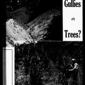 Are you Growing Gullies or Trees? (Extension Circular No. 255)