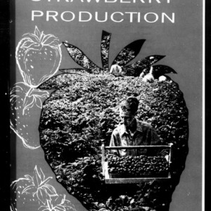 Commercial Strawberry Production, 1962 (Extension Circular No. 422, Revised)