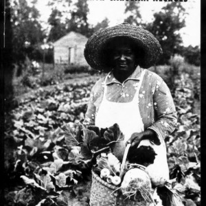 Extension Miscellaneous Pamphlet No. 53: A Million Dollar Educational Program Among Rural North Carolina [African Americans]