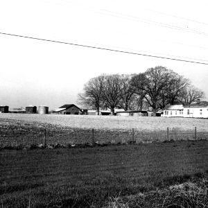 View, Felton-Lamm Farm, Wilson County, North Carolina