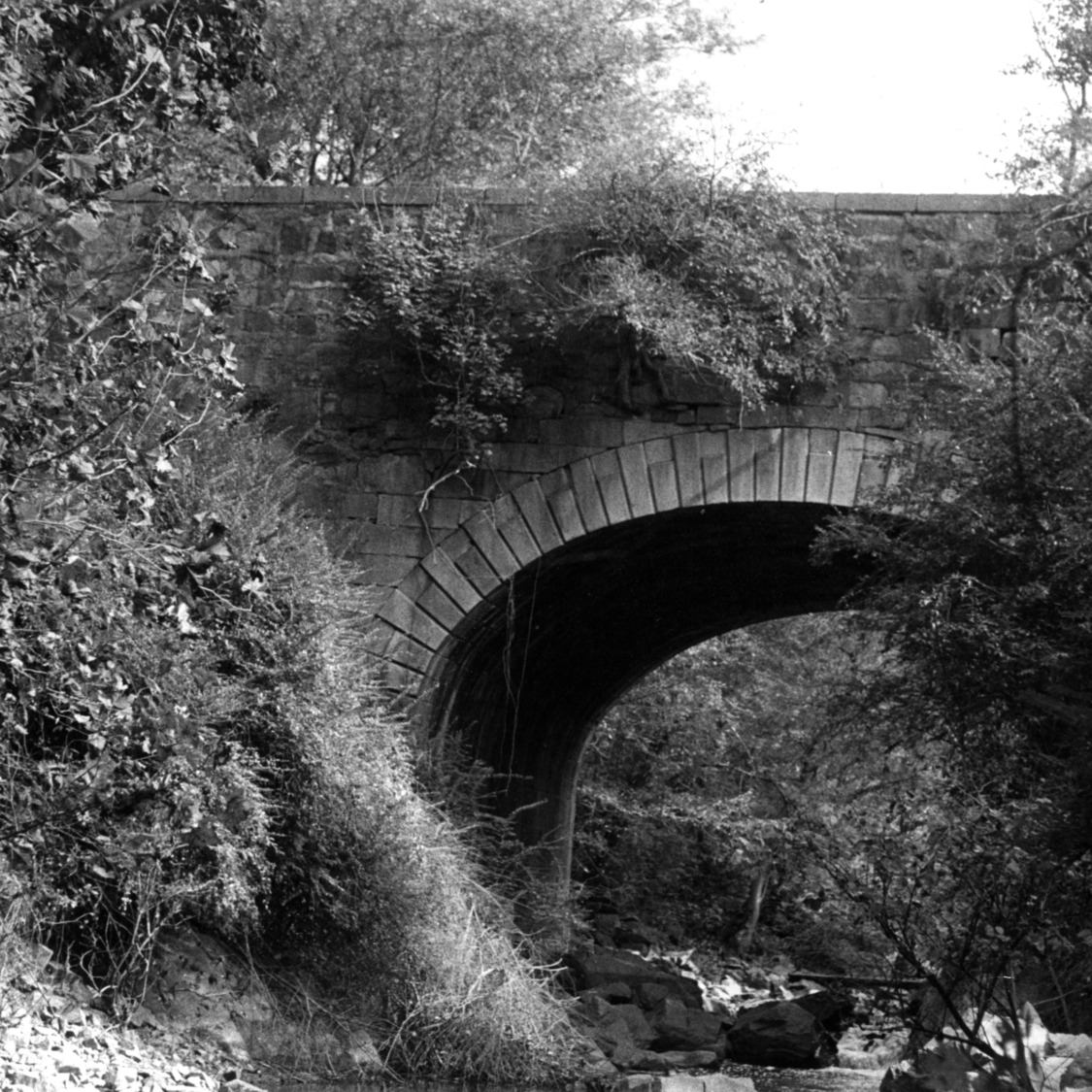 View, Chockoyotte Aqueduct, Halifax County, North Carolina