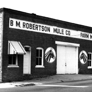View, B. M. Robertson Mule Co., Clayton, Johnston County, North Carolina