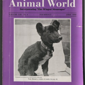 Animal World, April 1958