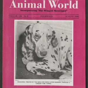 Animal World, August 1958