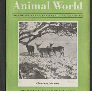 Animal World, December 1952