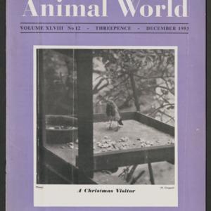 Animal World, December 1953
