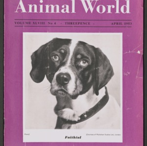 Animal World, April 1953