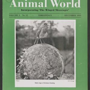 Animal World, December 1955