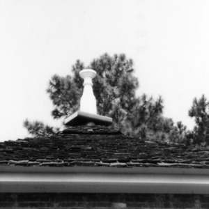 Roof detail, Richmond Temperance and Literary Society Hall, Scotland County, North Carolina