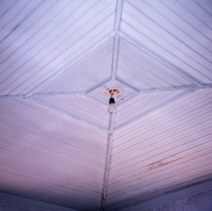 Ceiling detail, Hoffman-Bowers-Josey-Riddick House, Scotland Neck, Halifax County, North Carolina