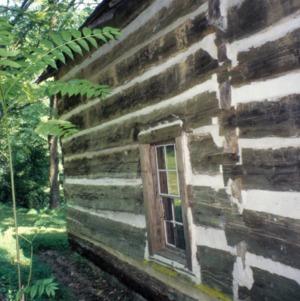 Partial view, Webb Cabin, Mitchell County, North Carolina