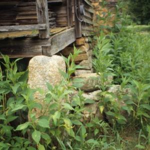 Porch foundation detail, Elliott House, Polk County, North Carolina